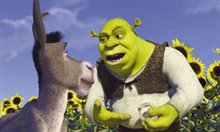 Shrek - Photo Gallery