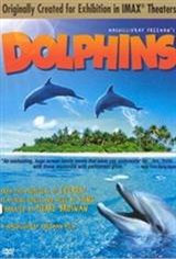Dolphins (2000) Movie Poster