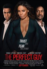The Perfect Guy Movie Poster